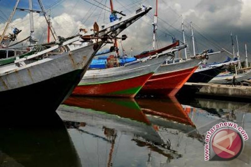 20 ABK kapal nelayan  hilang di perairan Parigi Moutong selamat