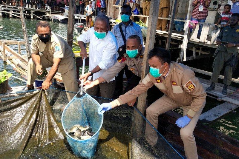 Pemkab Jayapura dorong usaha perikanan di tengah pandemi COVID-19