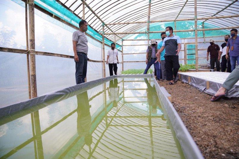 "Wagub Sulawesi Selatan kunjungi ""greenhouse"" petani Bone"