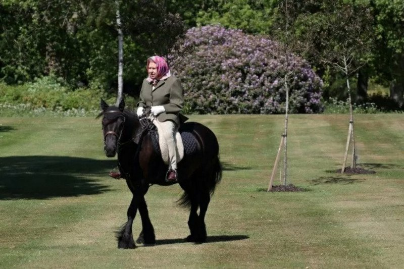 Pembatasan wilayah Inggris melonggar, Ratu Elizabeth berkuda