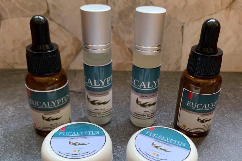 Antivirus eucalyptus inovasi Balitbangtan dilirik perusahaan asing
