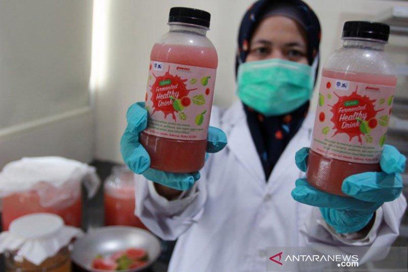 LIPI ciptakan minuman jambu biji untuk peningkat imun tubuh