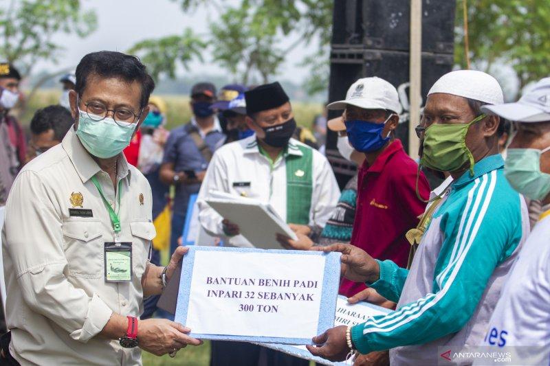 Masa pandemi COVID-19, Kementan tetap terus berupaya jaga pasokan pangan