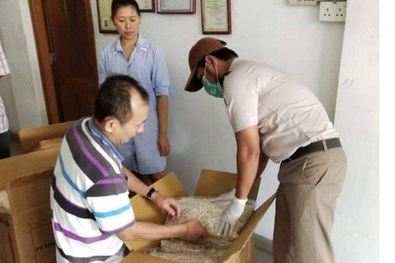 Karantina Pertanian Kabupaten Karimun genjot layanan ekspor sarang burung walet
