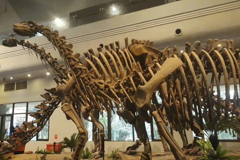 Jejak kaki dinosaurus ditemukan di Xinjiang China