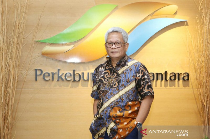 Ayo buruan!, PTPN Holding buka lowongan kerja berikut jurusan yang dicari