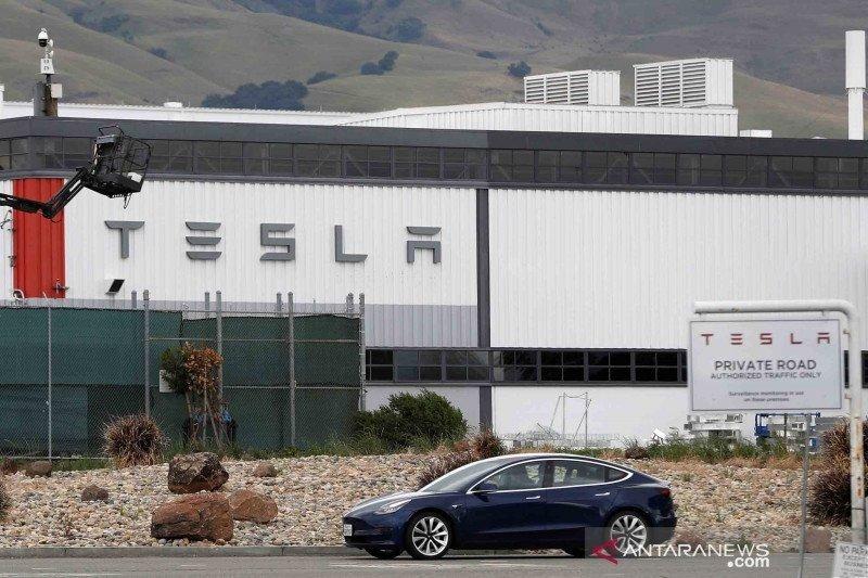 Tesla akan dapat keringanan pajak jika mau melakukan ini
