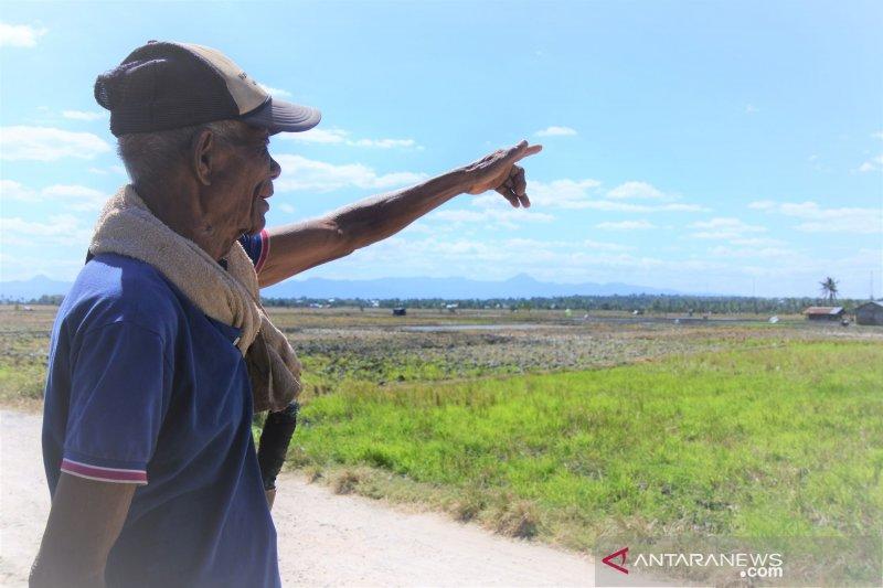 Petani Kupang keluhkan saluran irigasi rusak