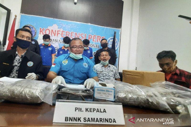 BNN Samarinda Ungkap Bisnis Ganja Antar Provinsi