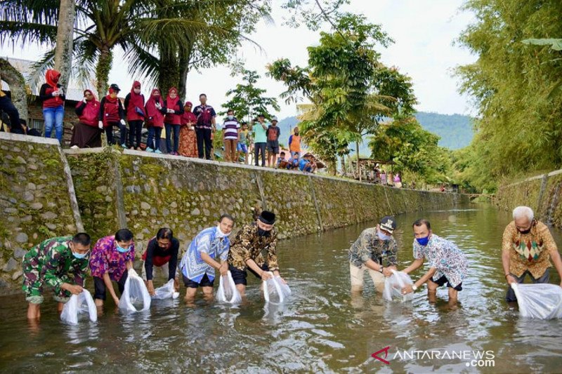 Bibit ikan ini yang ditebar Wali Kota Padang sebanyak 20 ribu ekor di Lubuk Begalung