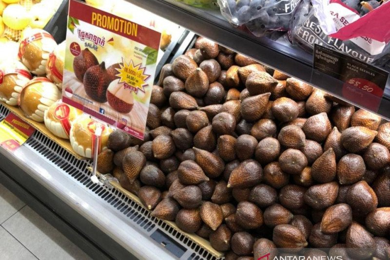 Indonesia kembali ekspor salak ke Kamboja