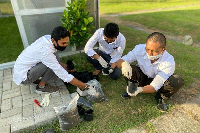 "Semangatkan green energy, PLN UPK Lombok bangun ""The Power Green House"""