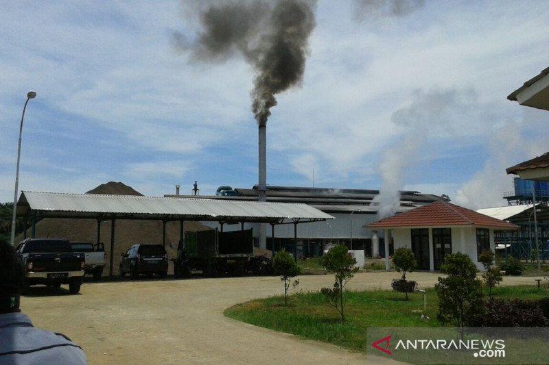 Dua pabrik minyak di Mukomuko Bengkulu berhenti beroperasi