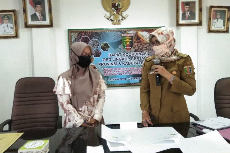 Dinas Peternakan dan Kesehatan Hewan Lampung jalin MoU dengan UTB