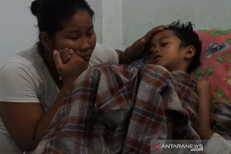 135 pasien DBD di Sumba Timur  sembuh