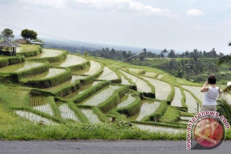Mentan Yasin Limpo: Perkuat pertanian dengan pelestarian adat budaya