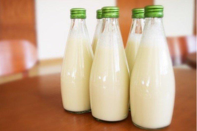 Penelitian: minum susu mentah dapat menyebabkan penyakit