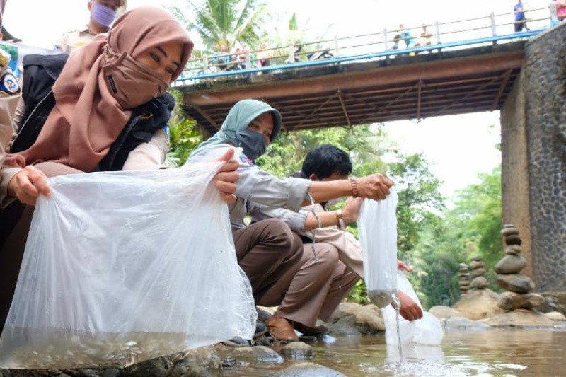 """BKIPM Semarang-DKP Jateng """"restocking"""" ikan di Sungai Songgoluwang Wonosobo"""