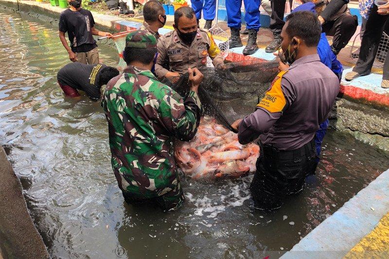 Ponggalan jadi Kampung Tangguh Nusantara di Yogyakarta