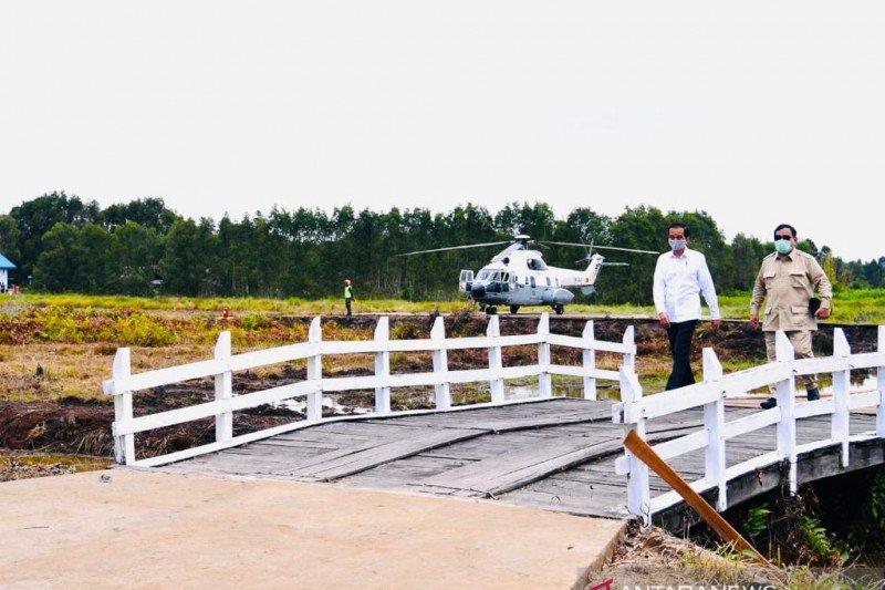 Presiden kunjungi lumbung pangan nasional di Kapuas Kalimantan Tengah
