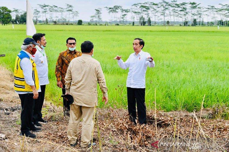 Presiden minta potensi desa-desa di Indonesia dikembangkan