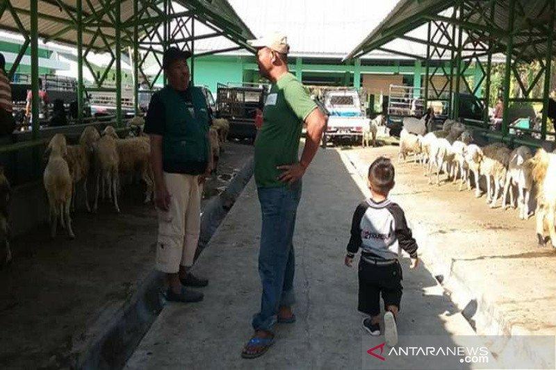 Permintaan hewan kurban dari Gunung Kidul tinggi
