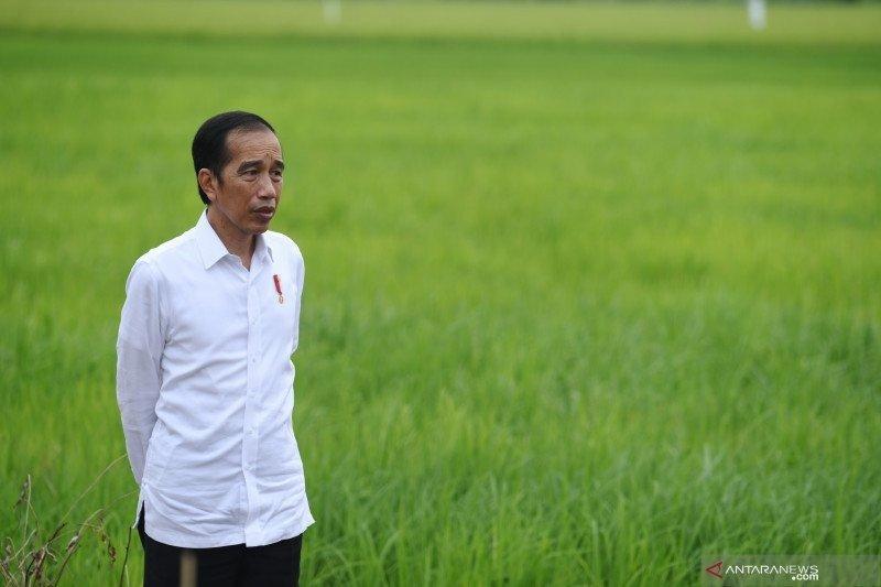 Menyimak arahan Presiden Joko Widodo kepada kepala daerah