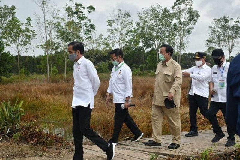 Menhan Prabowo targetkan 1,4 juta hektare lahan singkong pada akhir 2025