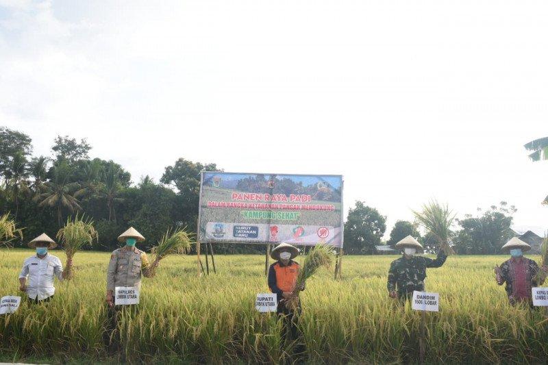 Dukung kampung sehat di Lombok Utara, Sekda dan Forkopimda panen raya padi
