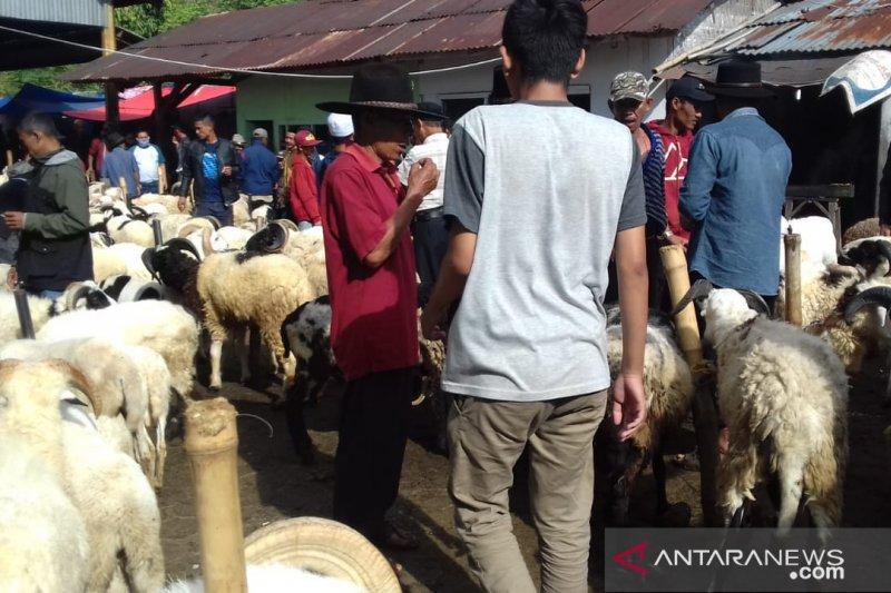 Harga domba kurban di Cianjur merangkak naik jelang Idul Adha