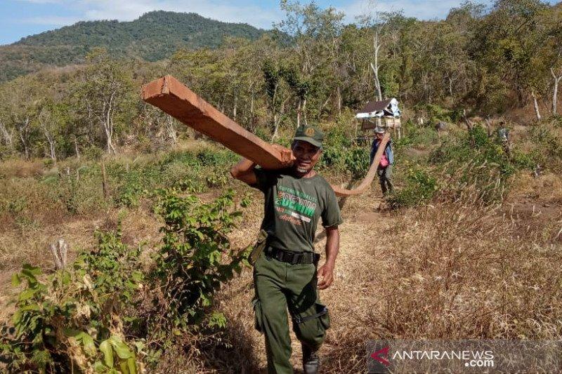 Polhut NTB memburu cukong perambahan Hutan Ampang Kampaja