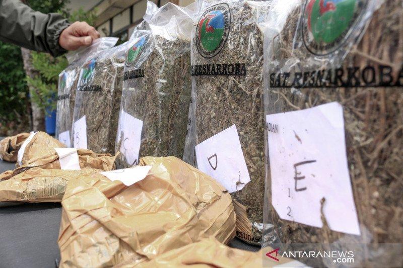 Kalapas Mataram mengakui kecolongan terkait kasus ganja 6,68 kilogram
