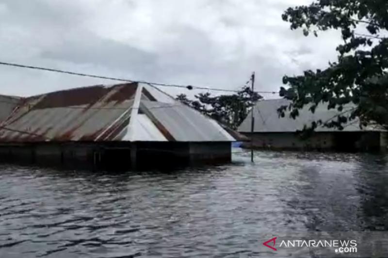Banjir di Konawe rendam rumah warga hingga setinggi atap, ribuan warga mengungsi