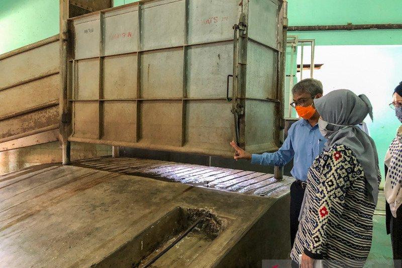 RPH Giwangan Yogyakarta maksimal memotong 225 sapi kurban