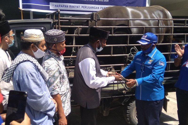 Demokrat Papua salurkan hewan kurban tiga masjid Kota Jayapura