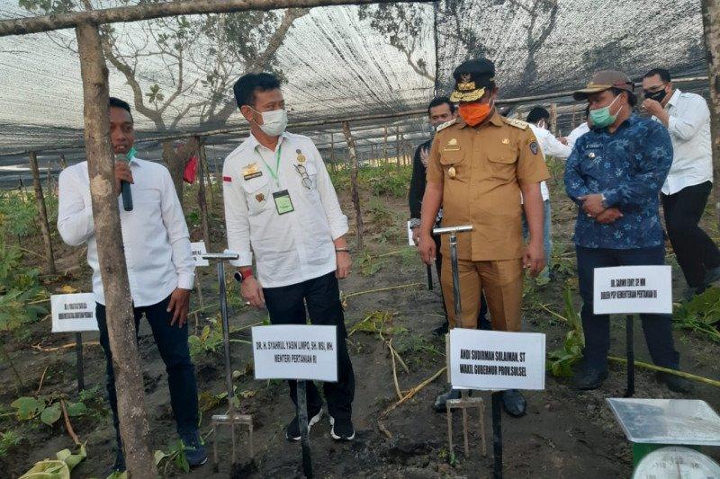 Mentan serahkan bantuan pertanian Rp26 miliar ke Kabupaten Sidrap