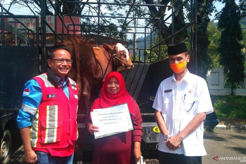 Sembilan ekor hewan kurban sumbangan perusahaan dan OPD Solok selatan dibagikan ke masyarakat