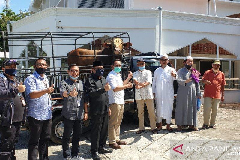 BRI Cabang Padang kembali berbagi di momentum Idul Adha