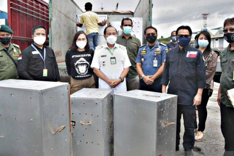 Wali Kota  terima repatriasi 91 satwa endemik Indonesia