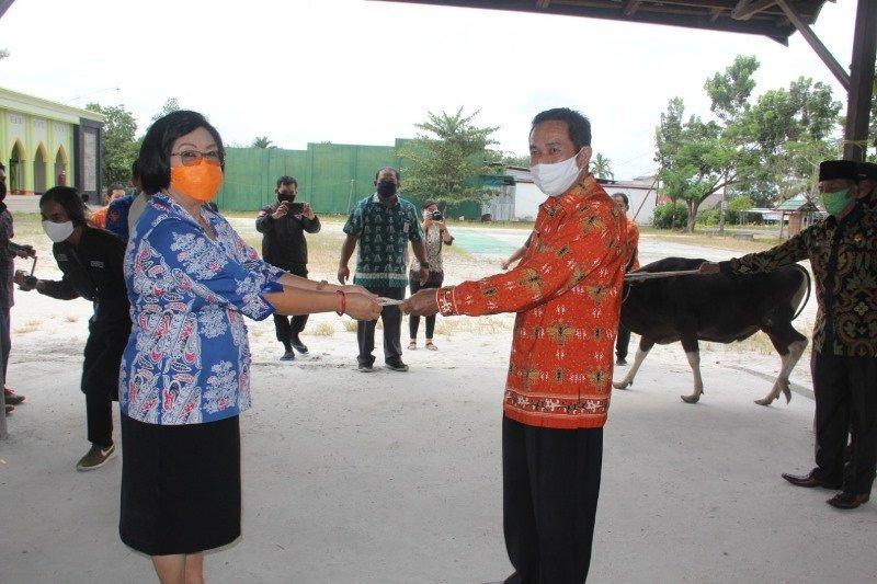 Gumas terima bantuan tujuh ekor sapi kurban dari Pemprov