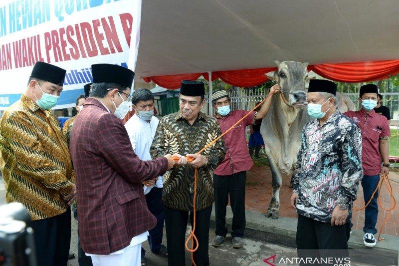 Presiden serahkan sapi kurban seberat 1 Ton ke Masjid Istiqlal