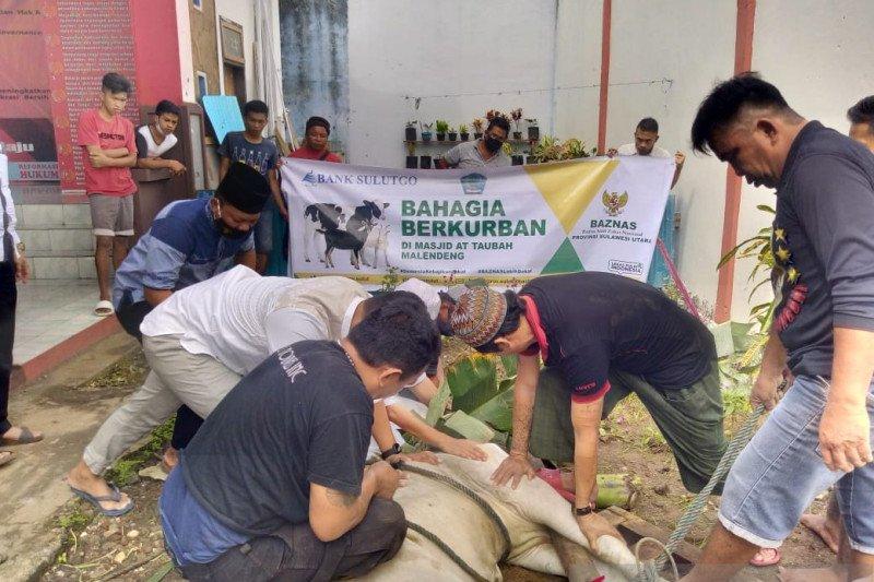 Baznas bersinergi dengan BSG-BI-Muzakki menyalurkan hewan kurban