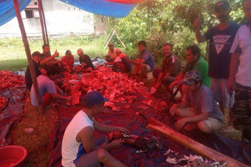 LDII Agam membagikan 1.000 kantong daging kurban