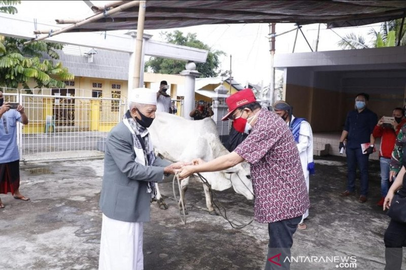 Bupati Minahasa serahkan hewan kurban di 33 masjid
