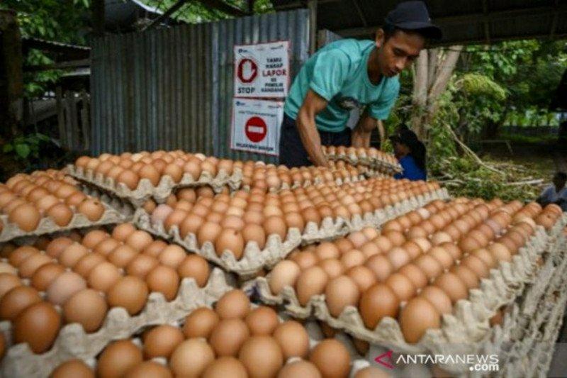 BPS Sulteng:  Palu alami inflasi, Luwuk deflasi