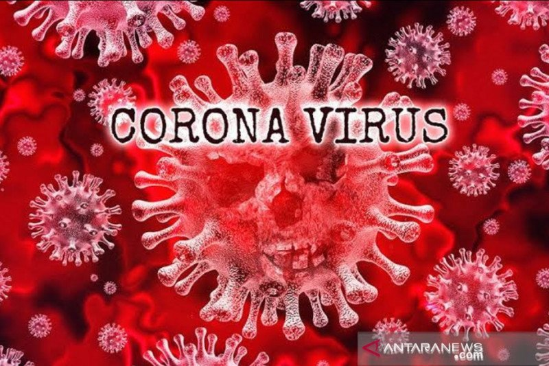 Update COVID-19  di Indonesia:  70.237 pasien sembuh, dan  113.134 kasus positif