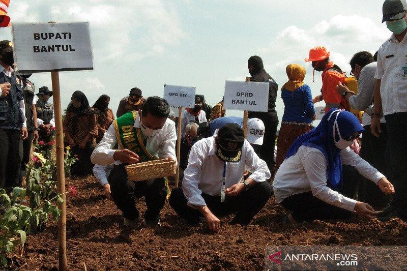 Bantul inisiasi gerakan tanam bawang merah di Nawungan Imogiri