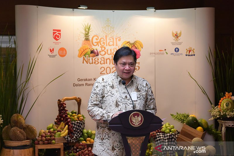 Indonesian economy in better shape than other countries: Airlangga
