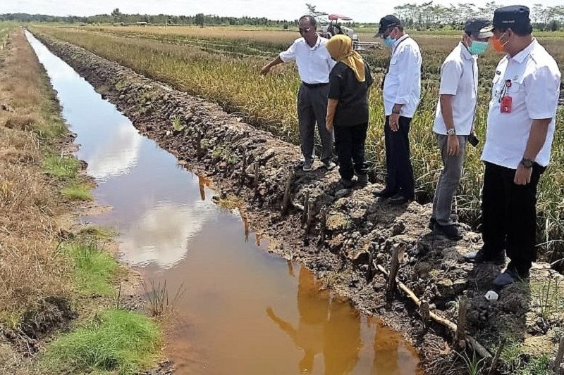 Jajaran DPP PDI Perjuangan tinjau lokasi lumbung pangan Kalteng