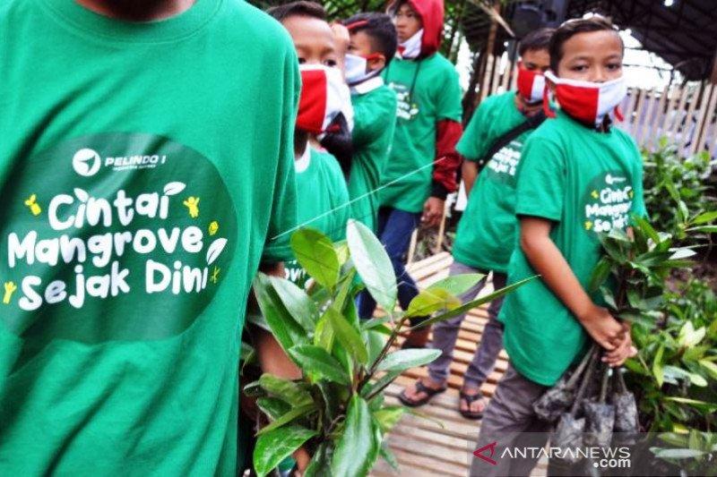 Penanaman Mangrove Sejak Dini